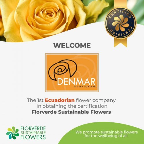 Congratulations to the first Ecuadorian company in obtaining the Florverde certification