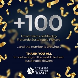 More than 100 flower farms in Colombia and Ecuador certified by Florverde Sustainable Flowers