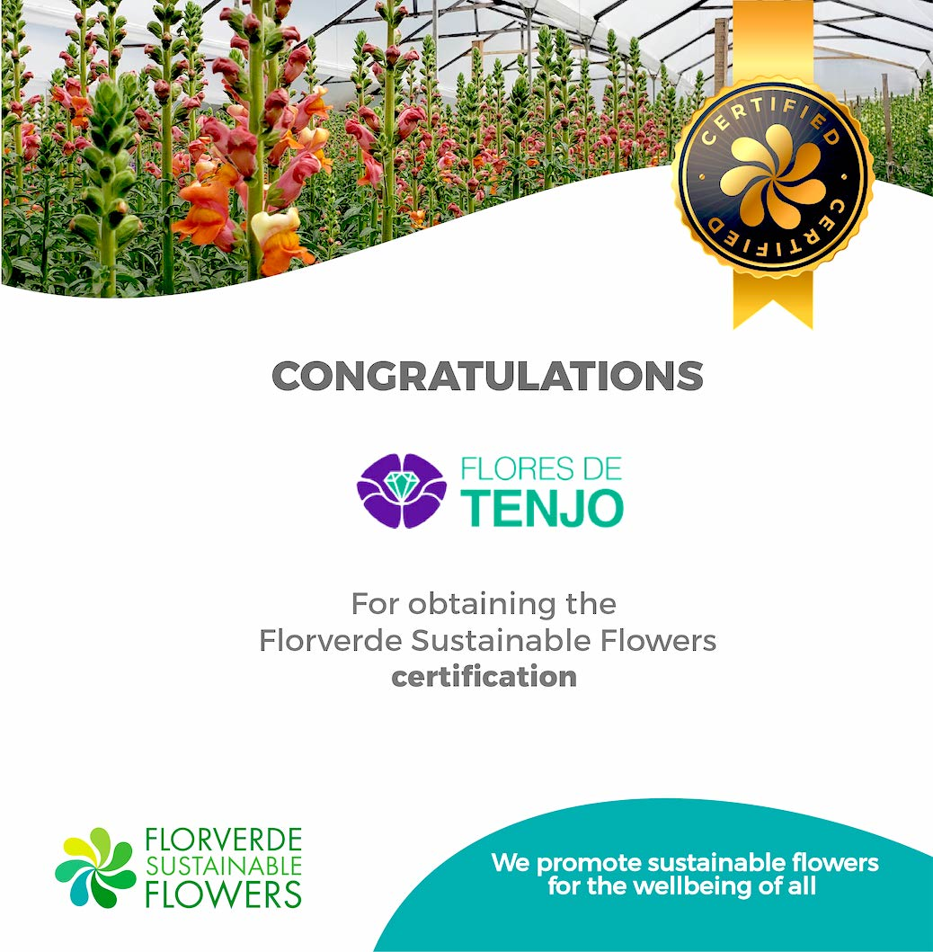 Flores de Tenjo obtained the FSF certification
