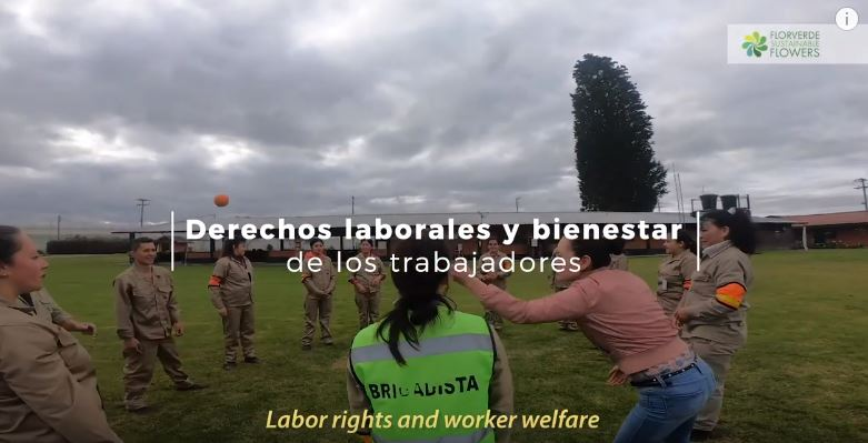 Our people, labor rights and workers welfare
